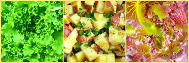 Lettuce & potato pic